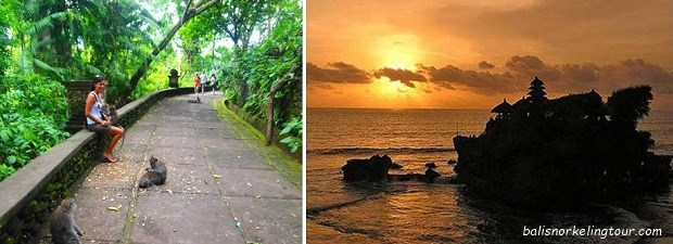 Bali Half Day Tour Packages