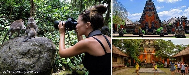 ubud half day tour packages
